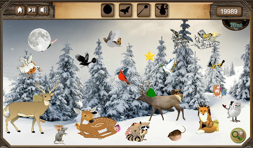 Hidden Object Winter Forest