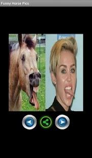 玩免費娛樂APP 下載Funny horse pictures app不用錢 硬是要APP