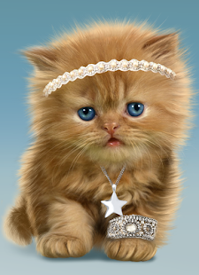 Baby Cat Cute Live Wallpaper Apps On Google Play