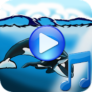 App Whales songs to sleep APK for Windows Phone