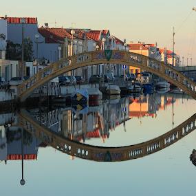 Bridge of Carcavelos by José M G Pereira - Buildings & Architecture Bridges & Suspended Structures ( reflection, aveiro, bridge, canal, city,  )