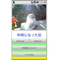 MyBook猫物語wide logo