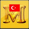 Metal Dedektör(Detektörü) icon