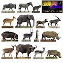 Learn The Animals Full icon