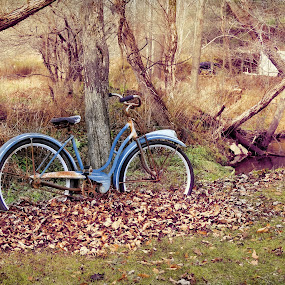 Re-cycled by Vivian Gordon - Artistic Objects Other Objects ( bike, display, antique, country )