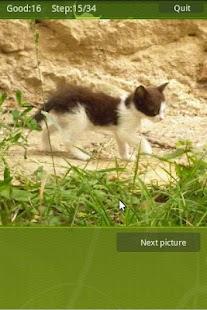 Mini Puzzle- screenshot thumbnail