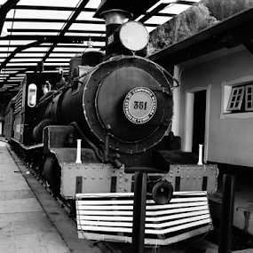 All aboard by Andre Salomão Brito Mattos - Transportation Trains ( sao paulo, brazil, old, monochrome, bw, train )