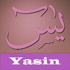 Yasin Pro icon