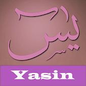 Yasin Pro