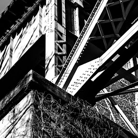 Train Trestle by Mike Watts - Black & White Buildings & Architecture ( south fork, trestle, train )