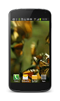 Screenshot of Butterfly Live Video Wallpaper