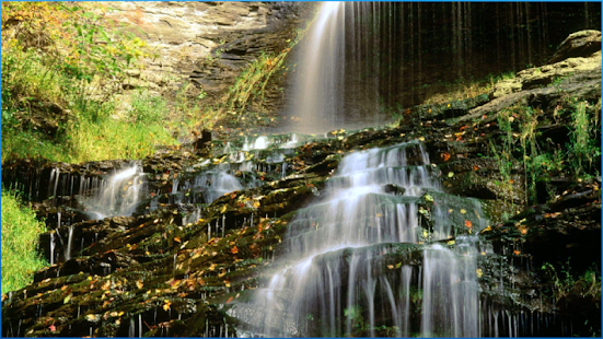 Nature Backgrounds Android Apps on Google Play
