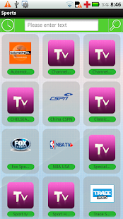 體育網絡電視