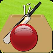 Cricket Record 2011