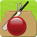 Cricket Record 2011 logo