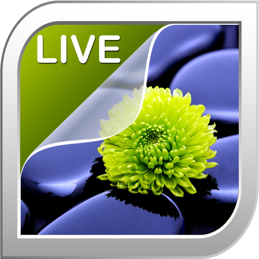 個人化必備App|자연 라이브 배경 화면 LOGO-綠色工廠好玩App