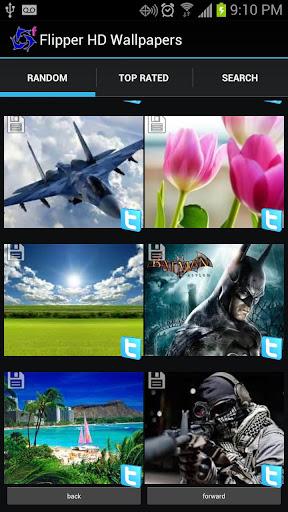 Flipper HD Wallpapers