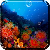 Coral Reef Live Wallpaper