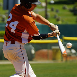 Driving the Ball by Travis Tapley - Sports & Fitness Baseball