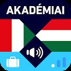 Hungarian-Italian Travel Guide icon