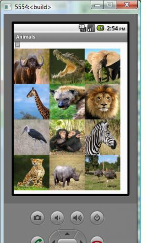 Animals_1