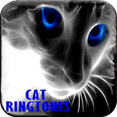 Cat Ringtones