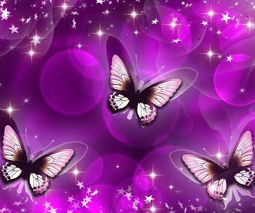 蝶のHDの壁紙