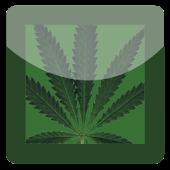 GO SMS Pro Weed Smoking Theme