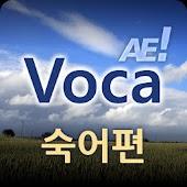 AE Voca 숙어편
