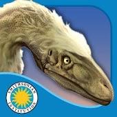 Velociraptor: Small and Speedy