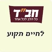 L'Chaim Tekoa