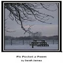 Pic Pocket a Poem logo