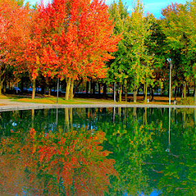 Autumn Reflections by Ronnie Caplan - City,  Street & Park  City Parks ( water, colourful, autumn, trees, reflections, forest, lake, , relax, tranquil, relaxing, tranquility )