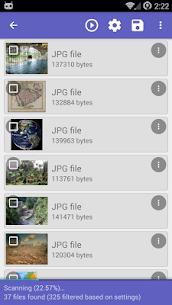 DiskDigger Pro: Recuperación de archivo 8