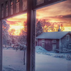 Frosty by Erika Lorde - Buildings & Architecture Other Exteriors ( sweden, winter, cold, snow, frost, christmas, north )