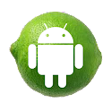 Lime theme icon