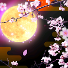 Cherry Blossoms at Night icon