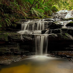 Leura Cascades by Michael Lucchese - Landscapes Waterscapes ( water, national park, waterfalls, color, green, australia, long exposure, landscape, blue mountains, sydney )