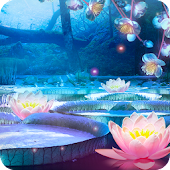 Magic Pond HD Wallpaper