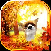 Autumn Fox Free live wallpaper