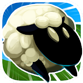 Sheep + Road = Danger