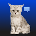Talking Pussycat Notifications logo