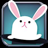 Next Pet Rabbit