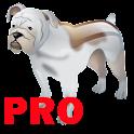 Baby Sound School (Animal)NoAD logo
