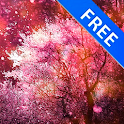 3D Cherry Blossoms Spring Free icon