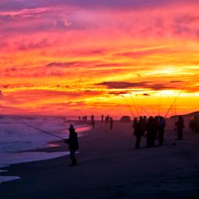 Stripers by Dan Allard - Landscapes Beaches ( shore, sand, fish, ocean, hamptons, new york, beach, ny, atlantic, east hampton, li, fishermen, surfcast, sunset, long island, fishing, georgica, surf, wainscott )