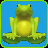 Flip Flop Frogs