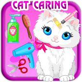 Pet Care Kitty Cat Animal
