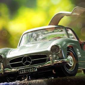 I AM ... Mercedes-Benz by Christian Tiboldi - Artistic Objects Toys ( car, toy, mercedes-benz, benz, dof, close up, mercedes, miniature,  )