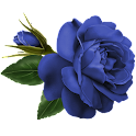 Flower Blue Rose Sticker logo